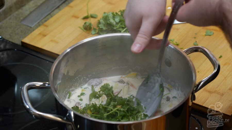 Cilantro being added to the finished soup